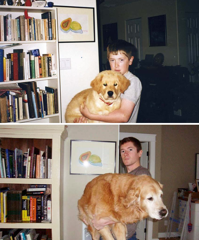30 Heart-Warming Photos Of Dogs Growing Up Together With Their Owners - My Dog Midas And Myself After A Decade Together
