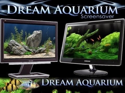 Screensaver Dream Aquarium