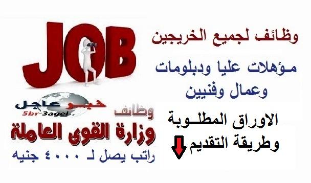 وظائف وزارة القوى العاملة لجميع المؤهلات الشروط وطريقة التقديم بالاعلان الرسمى
