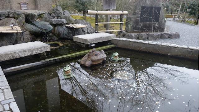 Kolam kodok di Tenryuji Temple