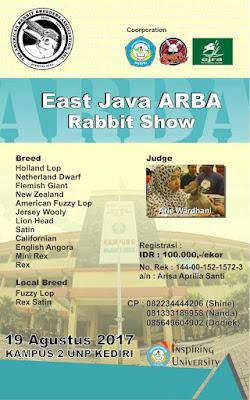Hasil Kontes Kelinci ARBA kediri 2017 Agustus