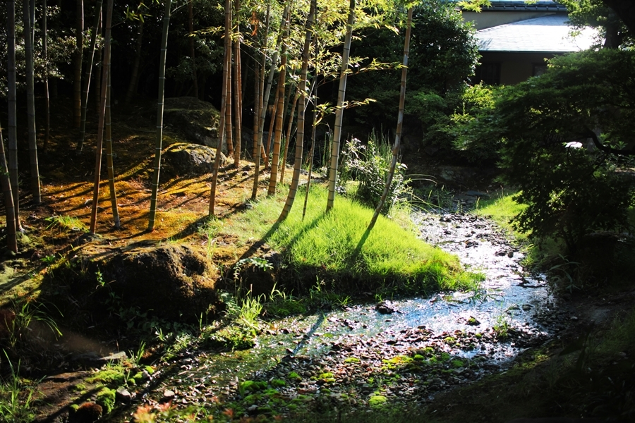 japanese garden river