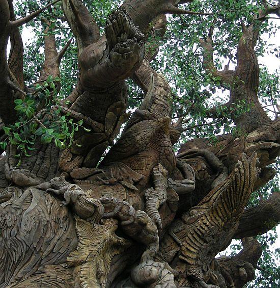 Teach Simple General Information: AMAZING TREE