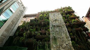 El JARDIN COLGANTE más grande de España: Hotel Mercuri Santo Domingo