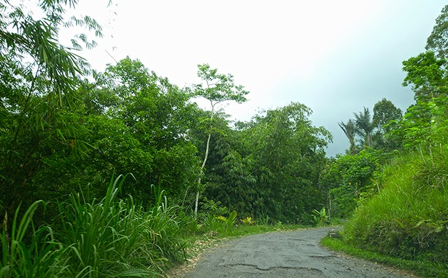 Malas carreteras en Bali