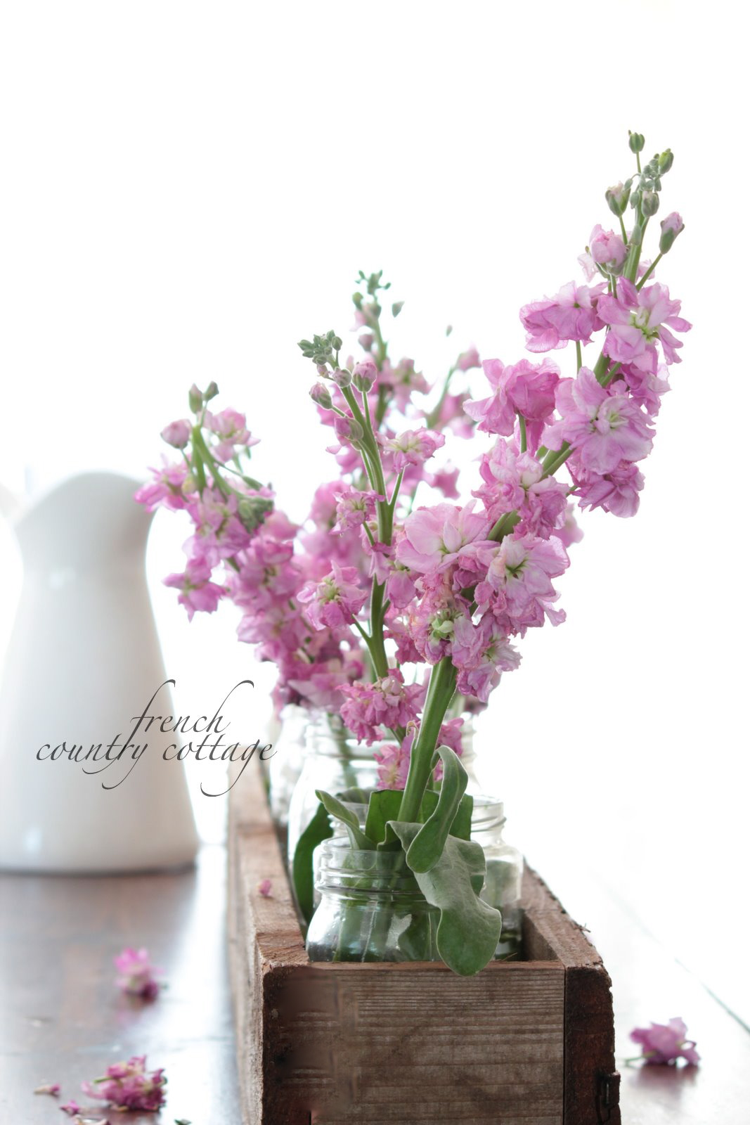 Rustic Box Centerpiece - FRENCH COUNTRY COTTAGE