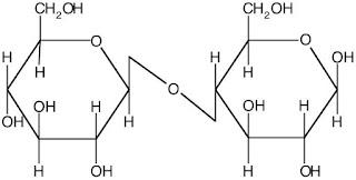 Figure 2 Cellobiose