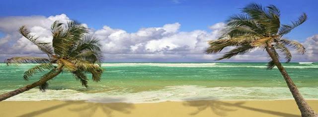 oceano, palme, spiaggia, nuvole,