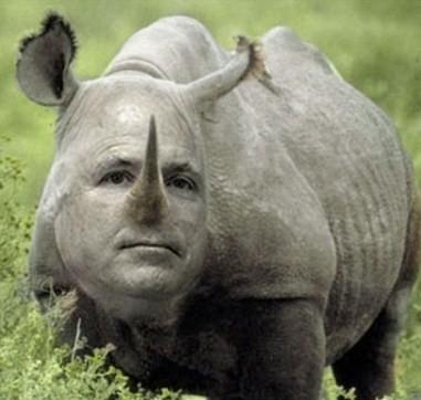 Y Entonces Alex Dijo Papa Es Un Rinoceronte
