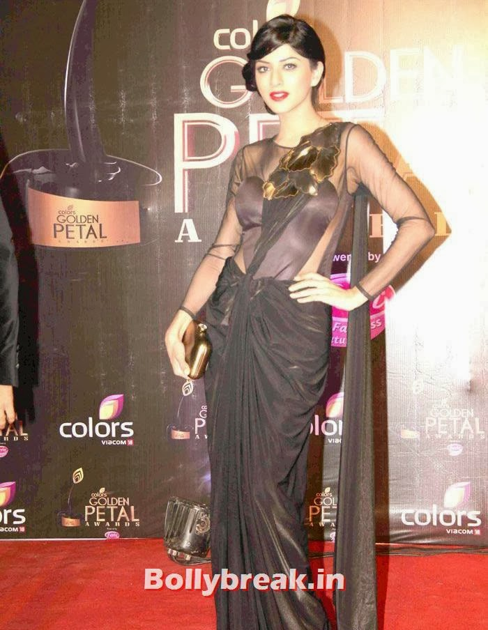 Sapna Pabbi, Colors Golden Petal Awards Dec 2013 Photos