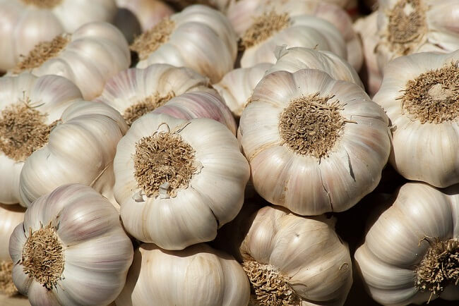 manfaat bawang putih untuk menyuburkan rambut