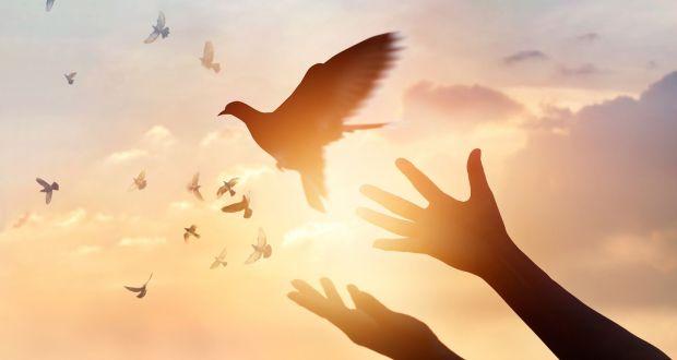 La ley al servicio de la libertad: Prohíbir, exigir o regular