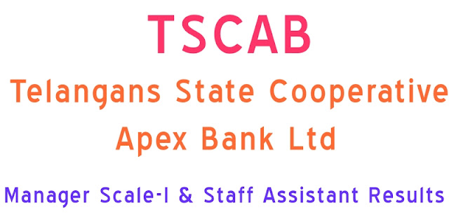 TSCAB-Manager-Scale-I-Staff-Assistant-Results-2017