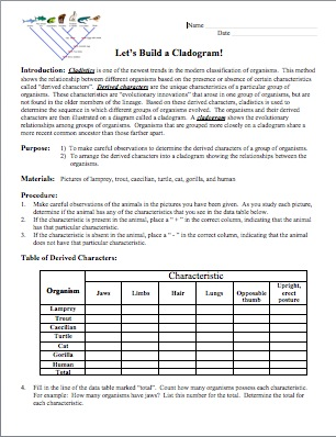 Amy Brown Science Teach Classification And Make It Fun