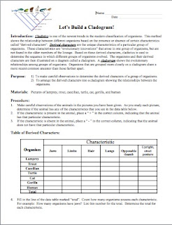 28+ [ Making Cladograms Worksheet ] | evolution and nature ...