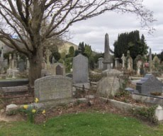 IrishGenealogyNews: Images of Belfast burial records now available