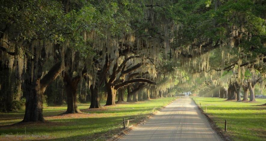 Boone Plantation Tour