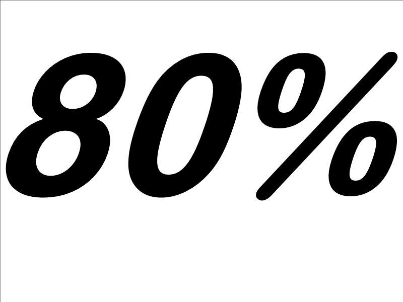 Risultati immagini per 80%
