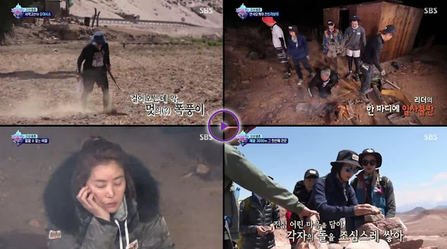 Law of The Jungle in Chile Episode 310 Subtitle Indonesia