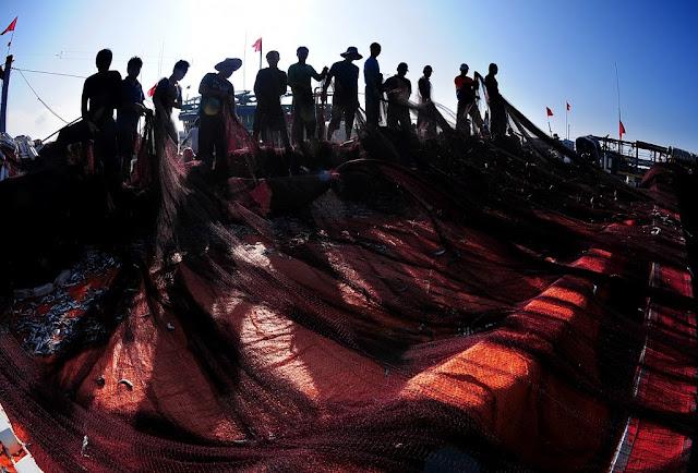 Sau chuyến ra khơi về các ngư dân dũ lưới cá.