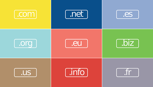 Choosing a Domain Name for a Personal Website  Domain Extension