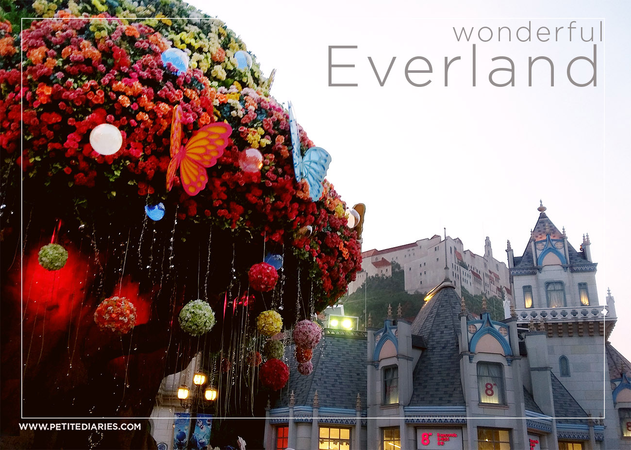 trip to everland korea