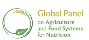 Urban diets and nutrition: Trends, challenges, and opportunities for policy action