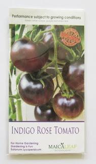 benih-tomat-ungu.jpg