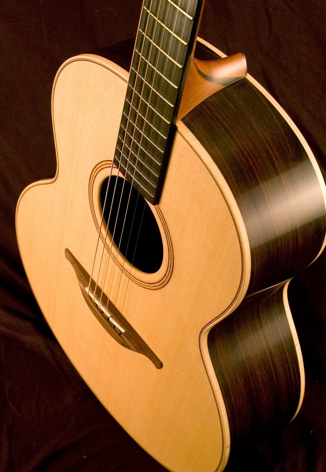 Electric Guitar vs. Acoustic Guitar Essay