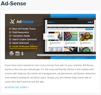Ad-Sense, The Premium WordPress Theme with better ad management including ad blocker detection