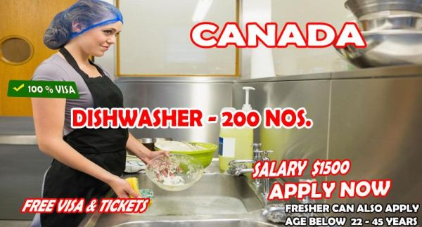 Dishwasher Job Vacancies In Canada With Free Visa - Apply Now