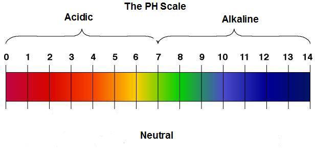 Ph balance definition