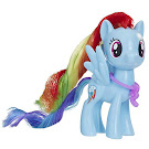 My Little Pony Teamwork Lessons Rainbow Dash Brushable Pony