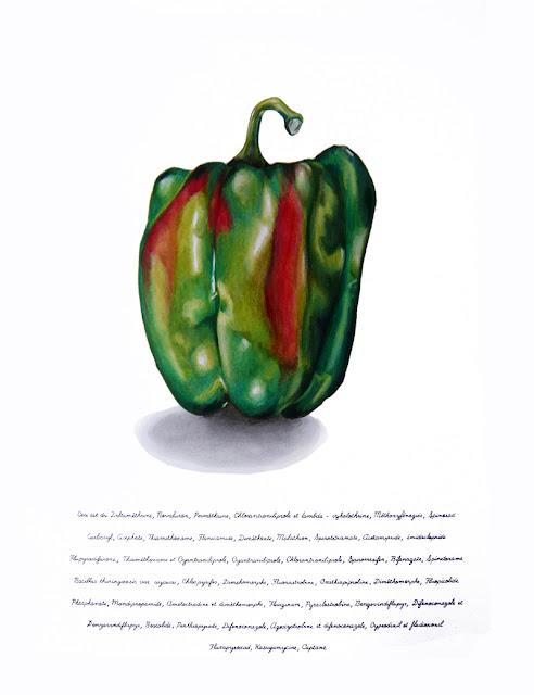 """Le dessin d'une poivon vert et rouge sur papier blanc . En dessous une liste de produits phytosanitaires commençant par """"Ceci est""""."""