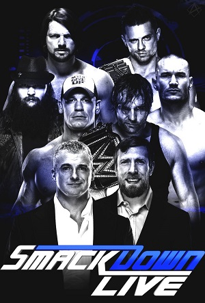 WWE Smackdown Live 29 January 2019 480p HDTV 350MB