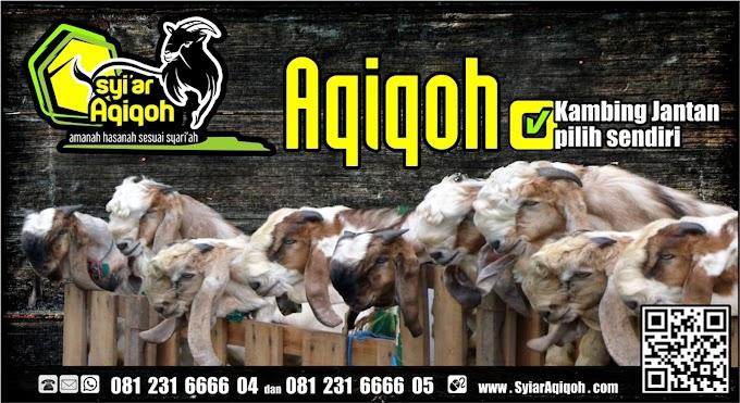 Jasa Aqiqah 2019 Bangkalan, Surabaya, Sidoarjo, Gresik dan Kota lainnya
