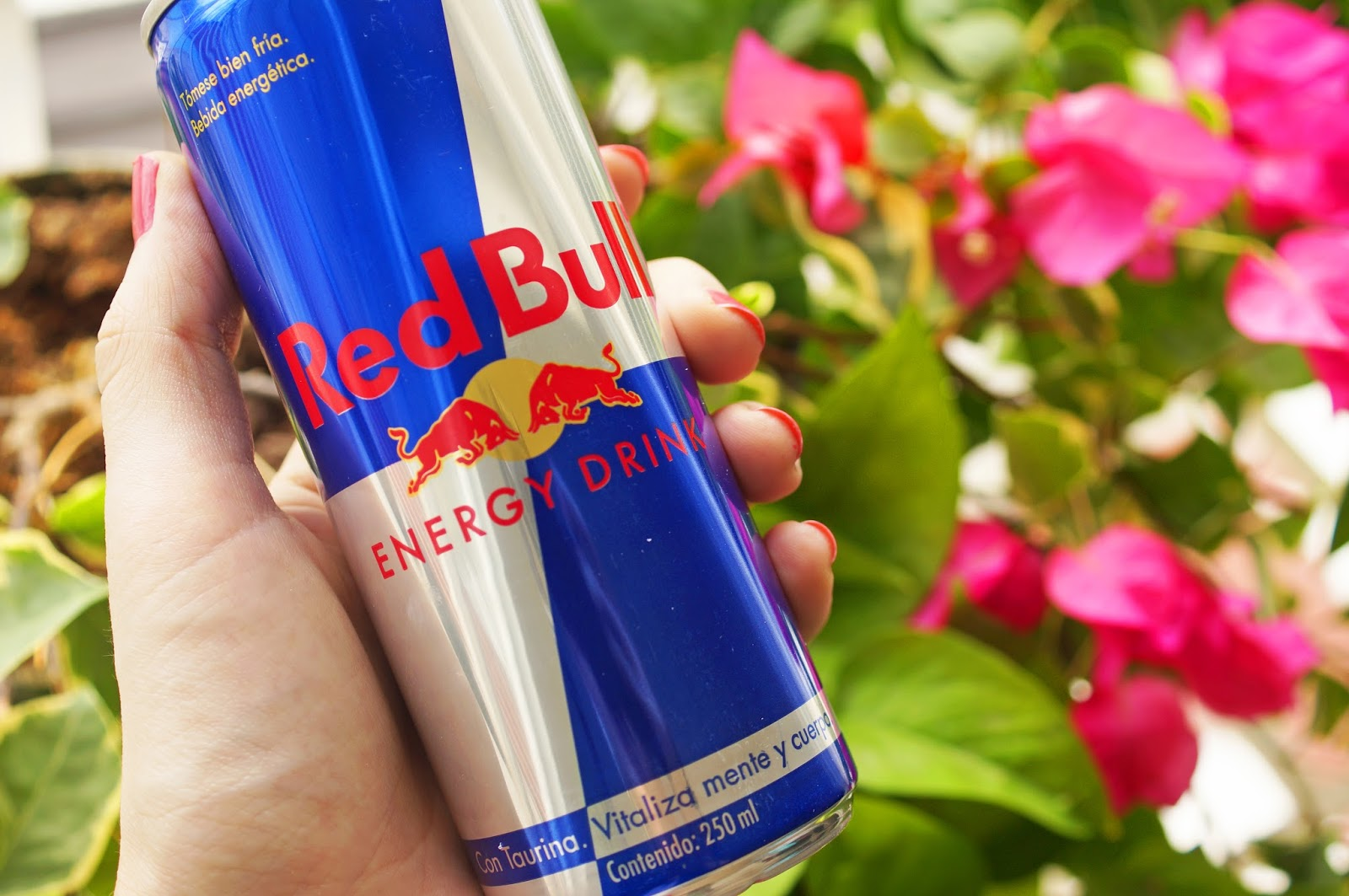 Fill yourself with energy with just one can of Redbull!