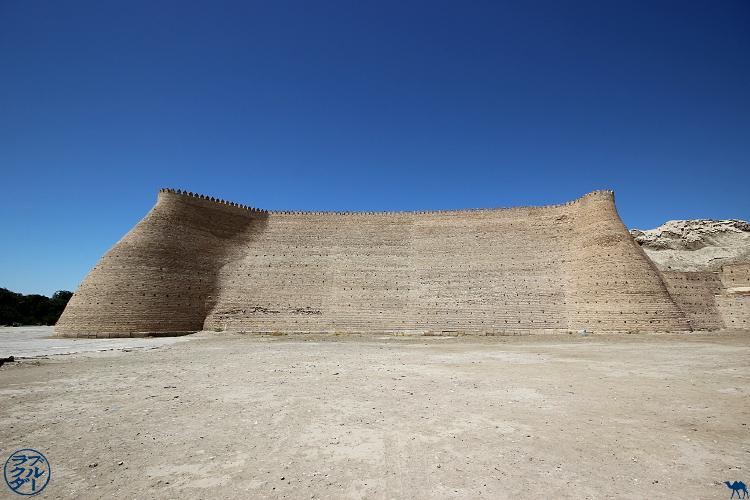 Le Chameau Bleu - Blog Voyage Ouzbékistan Boukhara - citadelle ARK à Boukhara