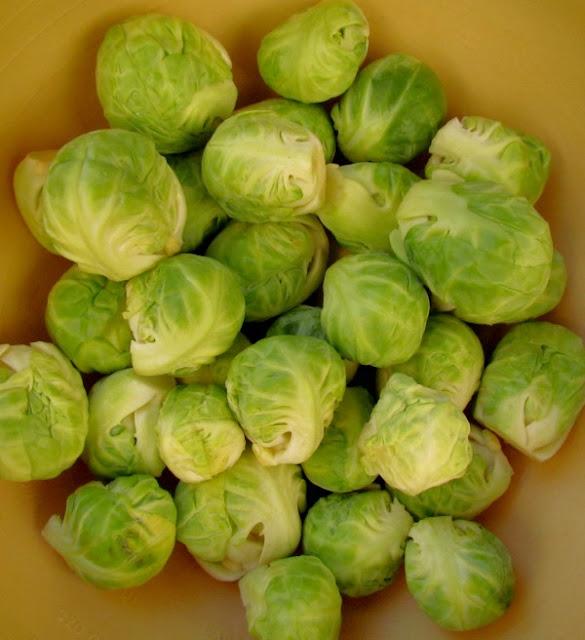 10 alimentos para emagrecer no inverno, couve de bruxelas