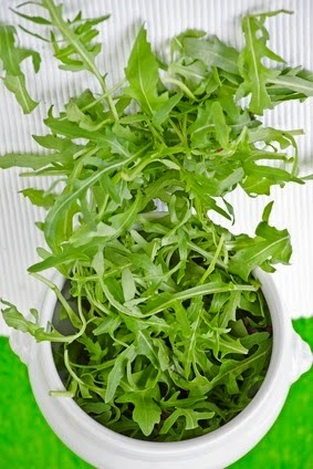 Useful Properties of Arugula