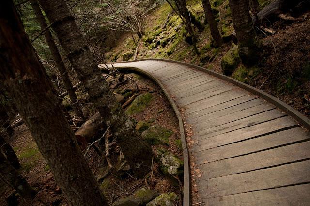Parc Nacional d'Aigüestortes 4