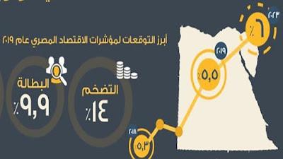 صندوق النقد الدولي, الحالة الاقتصادية لمصر,