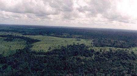 Keseruan Wisata Taman Nasional Way Kambas Lampung