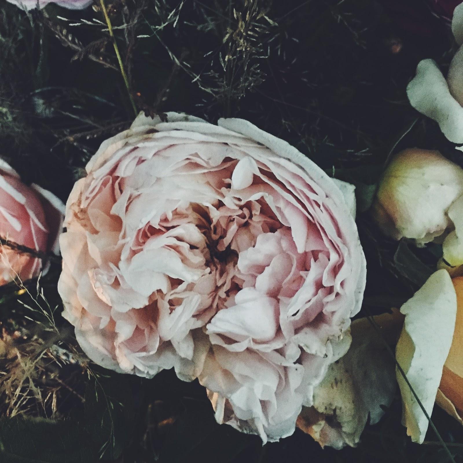La mesa de Jane - Flores, plantas y loza inglesa