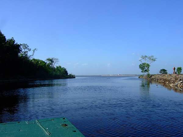 Sri Lanka Trip May 2012 Muthurajawela Marsh Saline