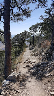 The steep trail up to the Guadalupe Mountain Peak.