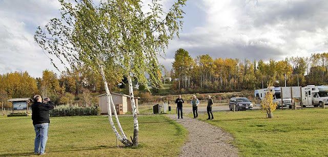 rest area Fraser Lake