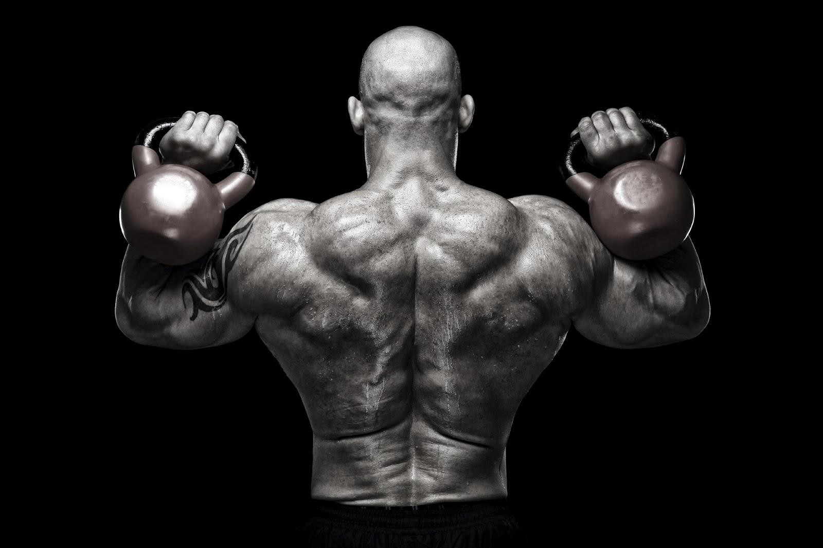 trenbolone 200 gains