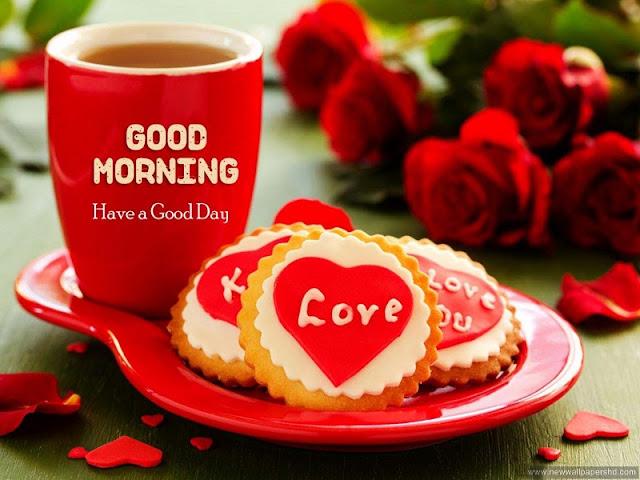 Rose Day Good Morning Whatsapp Status DP