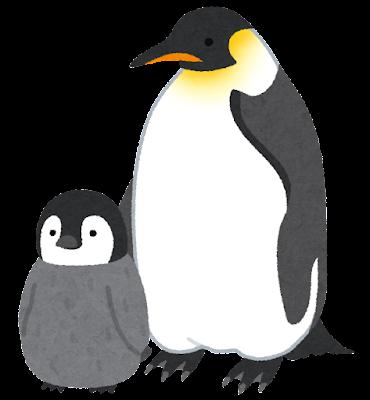 コウテイペンギンの親子のイラスト